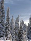 La Laponie Images libres de droits