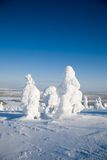 La Laponie Finlande Image libre de droits