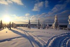 La Lapponia (Rovaniemi), Finlandia Fotografie Stock Libere da Diritti