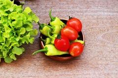 La lattuga, i pomodori ed i peperoni sono disposti insieme in una ciotola sulla a Immagine Stock