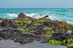 La lava della linea costiera del Maui oscilla le isole dell'Hawai Immagine Stock