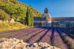 La lavanda coloca en el monasterio de Senanque en Provence, Francia Fotos de archivo libres de regalías
