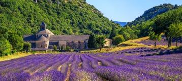 La lavanda floreciente coloca en la abadía de Senanque, Provence, Francia Imágenes de archivo libres de regalías