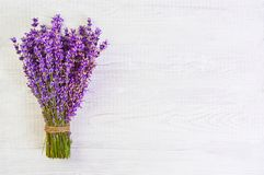 La lavande fraîche fleurit sur l'espace libre en bois blanc de fond de table Images stock