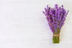 La lavande fraîche fleurit sur l'espace libre en bois blanc de fond de table Photo libre de droits