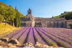 La lavande met en place avec le monastère de Senanque en Provence, Gordes, France Photos stock
