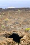 La lave perce un tunnel l'île d'Isabella - Galapagos Photos libres de droits
