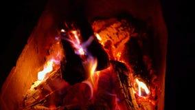 La leña quema en la parrilla en la noche Primer almacen de video