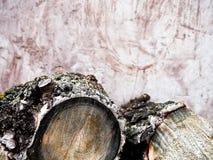 La le?a tajada abre una sesi?n la pila Fondo de la naturaleza Preparaci?n de madera Pila grande de madera cortada fresca contra e imagen de archivo libre de regalías