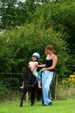 La lección de montar a caballo Foto de archivo libre de regalías
