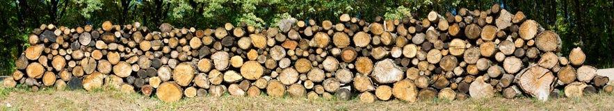 La legna da ardere asciutta ha risieduto in un mucchio per l'accensione della fornace Immagini Stock Libere da Diritti