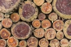 La legna da ardere impilata su è fronti di colore Fotografia Stock