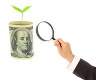 La lente d'ingrandimento si trova sui dollari americani su bianco Fotografia Stock Libera da Diritti