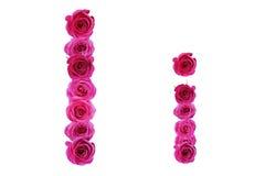 La letra i de rosas Imagen de archivo libre de regalías