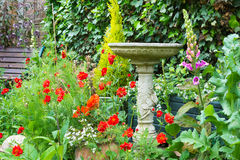 La lettiera dell'estate fiorisce con il bagno dell'uccello della pietra decorativa Fotografia Stock