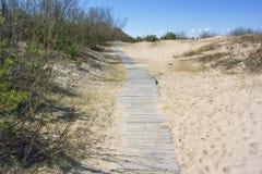 La Lettonie, Riga, Bolderaya Un chemin de marche entre les dunes Image libre de droits
