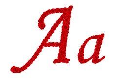 La lettre A d'alphabet et a fait à partir des fleurs de rose de rouge d'isolement sur le fond blanc Images stock