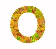 La lettre O de l'alphabet faite de feuilles d'automne Image libre de droits