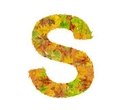 La lettre S de l'alphabet faite de feuilles d'automne Photo stock