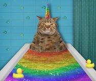 La licorne de chat prend un bain coloré photo libre de droits
