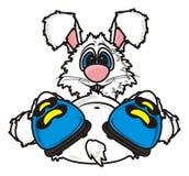 La liebre blanca miente en botas Fotografía de archivo libre de regalías