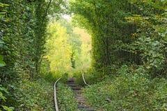 La ligne ferroviaire fait un tourne-à-droite et se cache dans les arbres Tunnel de l'amour - endroit merveilleux créé par nature Photos libres de droits