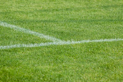 La ligne sur l'herbe sur le terrain de football Photos stock