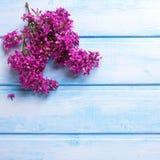 La lila aromática de la primavera florece en tablones de madera azules Imagen de archivo