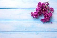La lila aromática de la primavera florece en tablones de madera azules Foto de archivo