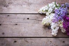 La lila aromática fresca florece en tablones de madera del vintage Imagenes de archivo