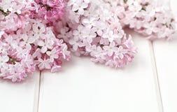 La lila blanca florece el ramo fotos de archivo