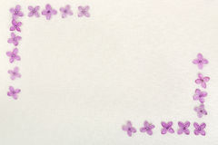 La lila florece el fondo fotografía de archivo libre de regalías