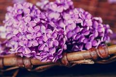 La lila florece en una cesta rural, cierre para arriba Fotografía de archivo