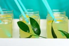 La limonada fresca con el limón vertió en los vidrios Fotos de archivo