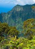 La linea costiera del Na Pali a Kalalau trascura, Kauai, Hawai Immagine Stock Libera da Diritti