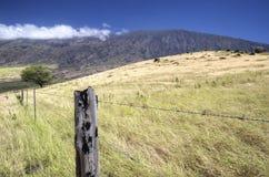 La linea costiera dell'isola scenica di Maui, Hawai Immagini Stock Libere da Diritti