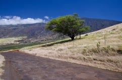 La linea costiera dell'isola scenica di Maui, Hawai Fotografia Stock
