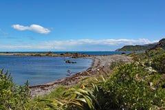 La linea costiera irregolare a Moa Point vicino a Wellington Airport fotografia stock libera da diritti