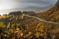 La linea della strada diretta dentro alla montagna nella stagione di autunno Fotografia Stock Libera da Diritti