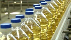 La linea per l'imbottigliamento degli oli vegetali archivi video