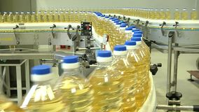 La linea per l'imbottigliamento degli oli vegetali video d archivio