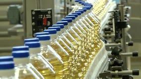 La linea per l'imbottigliamento degli oli vegetali stock footage
