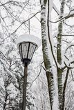 La linterna se cubre con nieve en el parque Imagenes de archivo