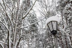 La linterna se cubre con nieve en el parque Fotografía de archivo libre de regalías