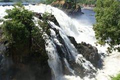 La Llovizna National Park stock image