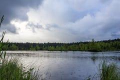 La lluvia en el lago Imagen de archivo libre de regalías