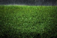 La lluvia que cae en tormenta enorme del temporal de lluvia del césped de la hierba verde cae el agua de los goteos fotos de archivo libres de regalías