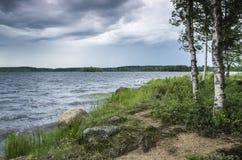 La lluvia que viene en día de verano Imagen de archivo libre de regalías