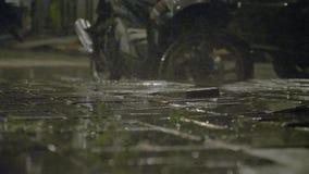 La lluvia tropical vierte en la noche almacen de video