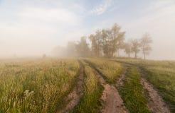 La línea de la playa de la primavera de un lago de niebla mountain en la salida del sol Imagenes de archivo